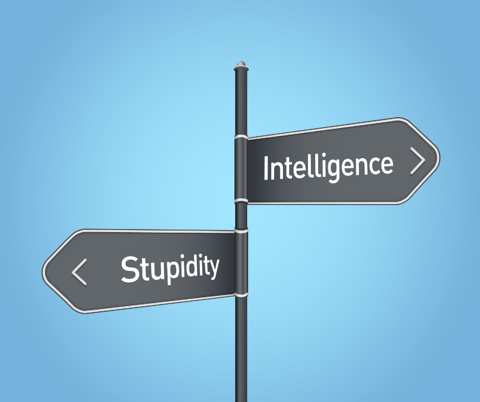 Intelligence is a trait that is particularly appreciated. Yet, a high IQ does not guarantee just as rational decisions.